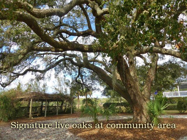 Fishing Creek Resort Homes For Sale - 642 Fore Deck, Edisto Island, SC - 3