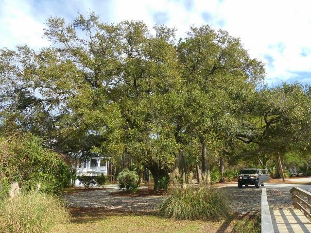 Fishing Creek Resort Homes For Sale - 642 Fore Deck, Edisto Island, SC - 2