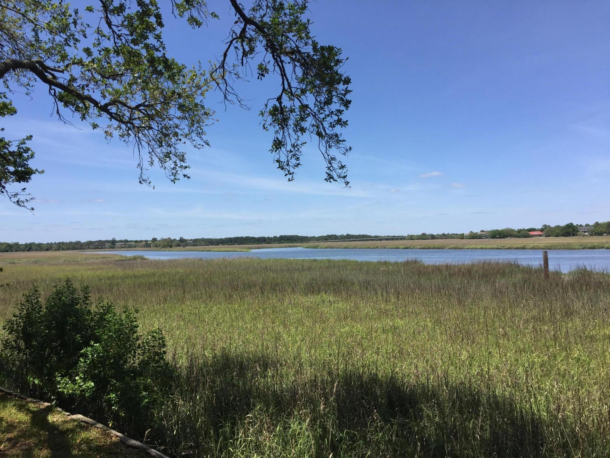 Becks Point Homes For Sale - 716 Jim Isle, Charleston, SC - 20
