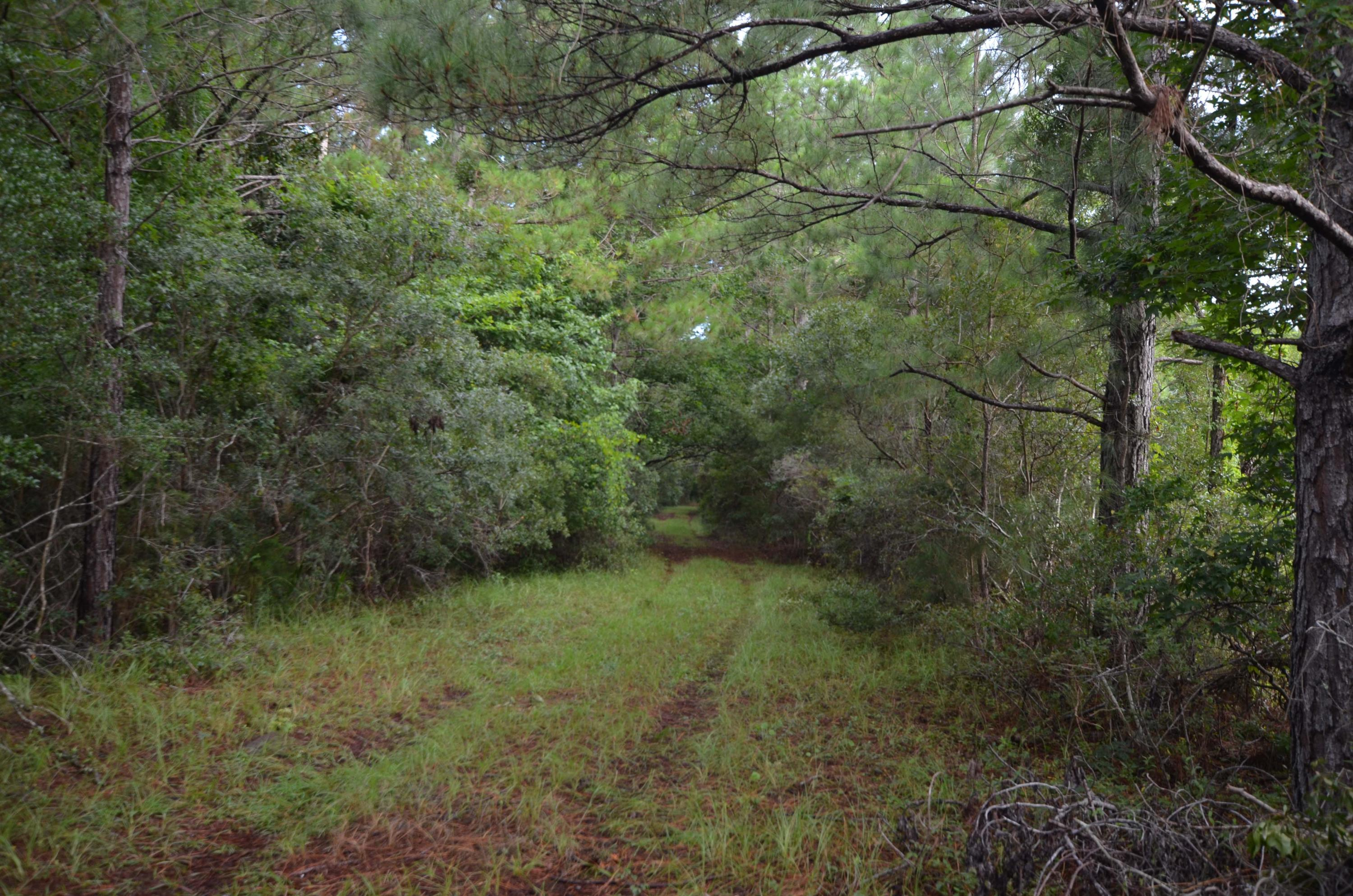 Photo of 7857 Doar Rd, Awendaw, SC 29429