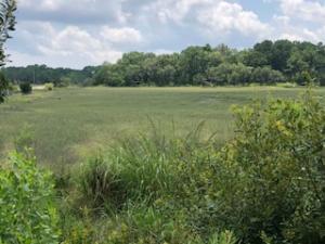 Photo of 0 Rushland Mews, Rushland, Johns Island, South Carolina