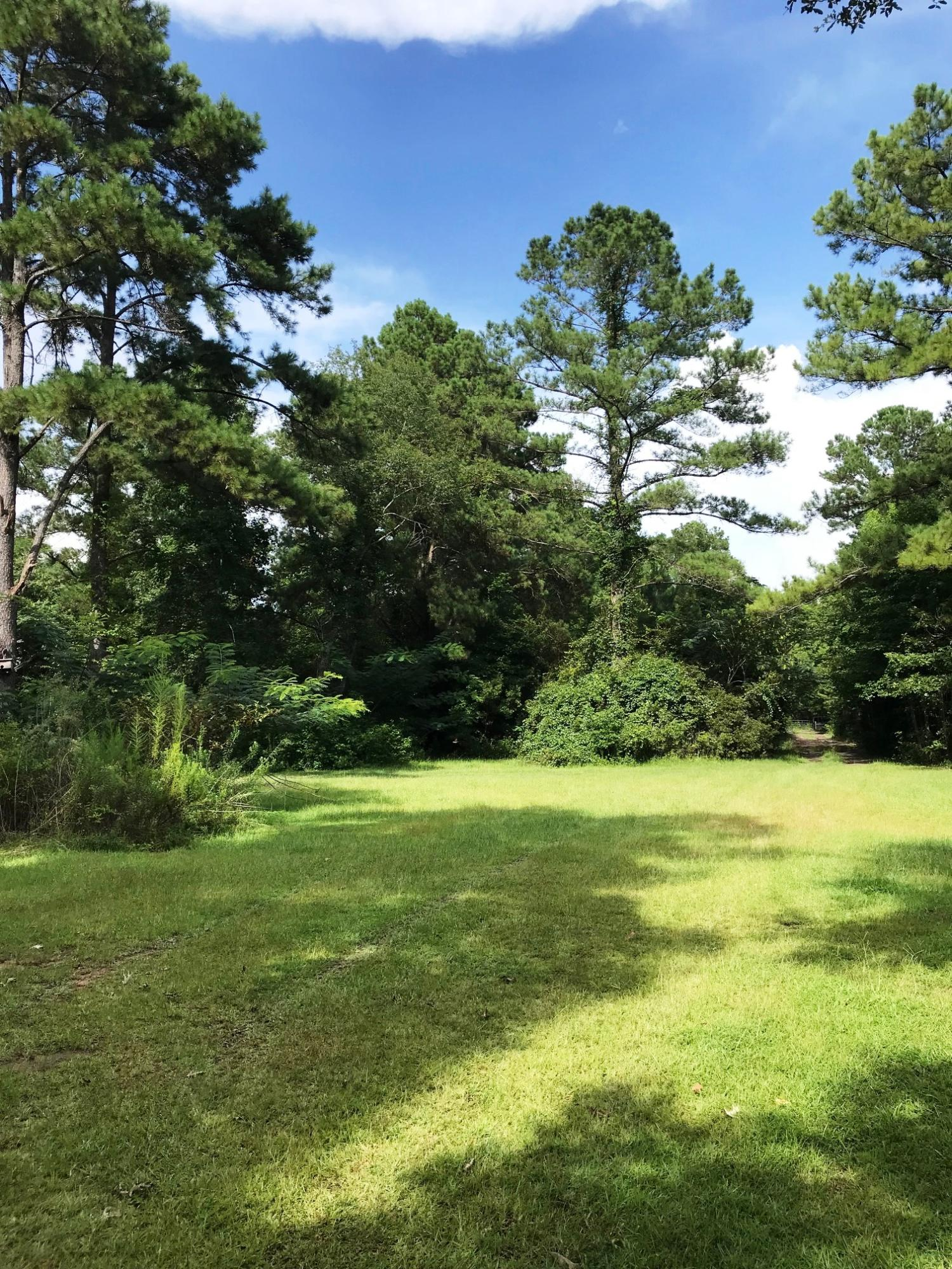 Photo of 6895 Parkers Ferry Rd, Adams Run, SC 29426