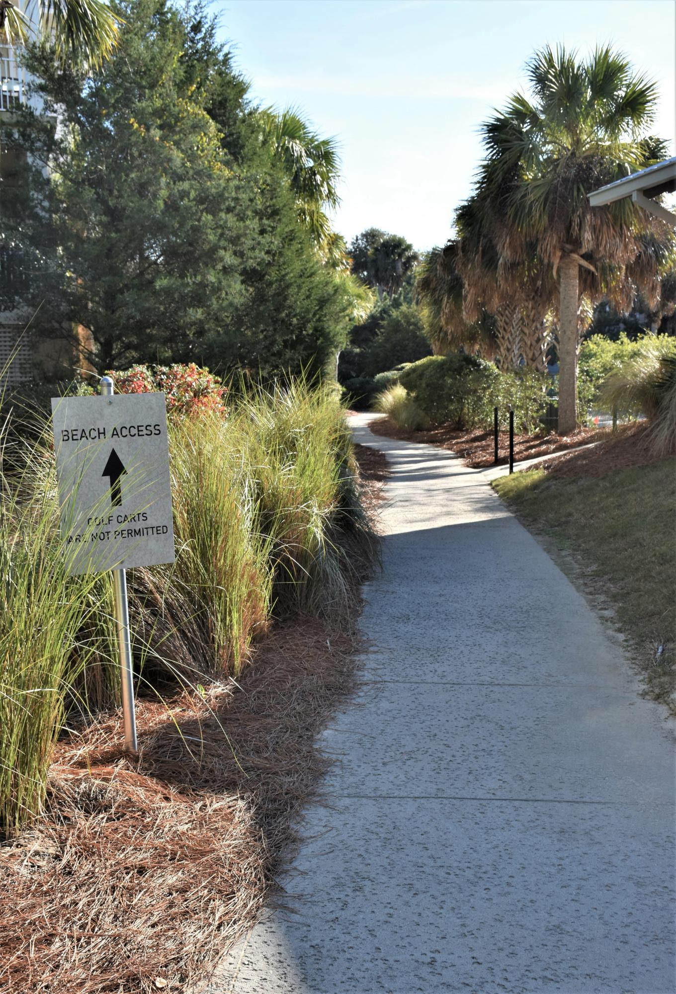 Wild Dunes Homes For Sale - 5804 Palmetto Dr., Isle of Palms, SC - 14