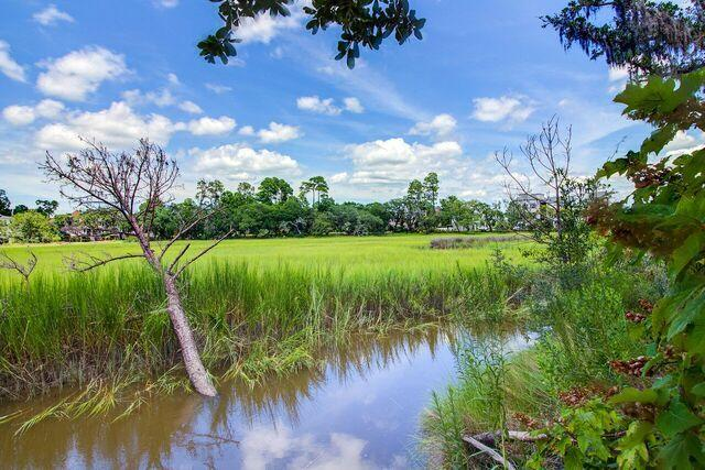 Daniel Island Park Homes For Sale - 134 Fairbanks Oak, Charleston, SC - 8
