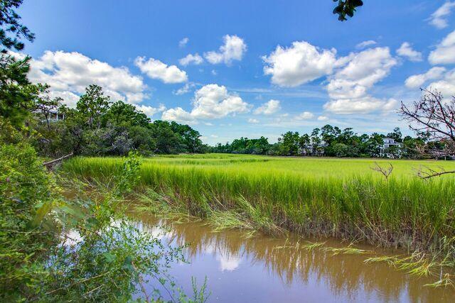 Daniel Island Park Homes For Sale - 134 Fairbanks Oak, Charleston, SC - 9