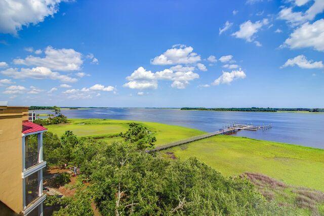Daniel Island Park Homes For Sale - 134 Fairbanks Oak, Charleston, SC - 58