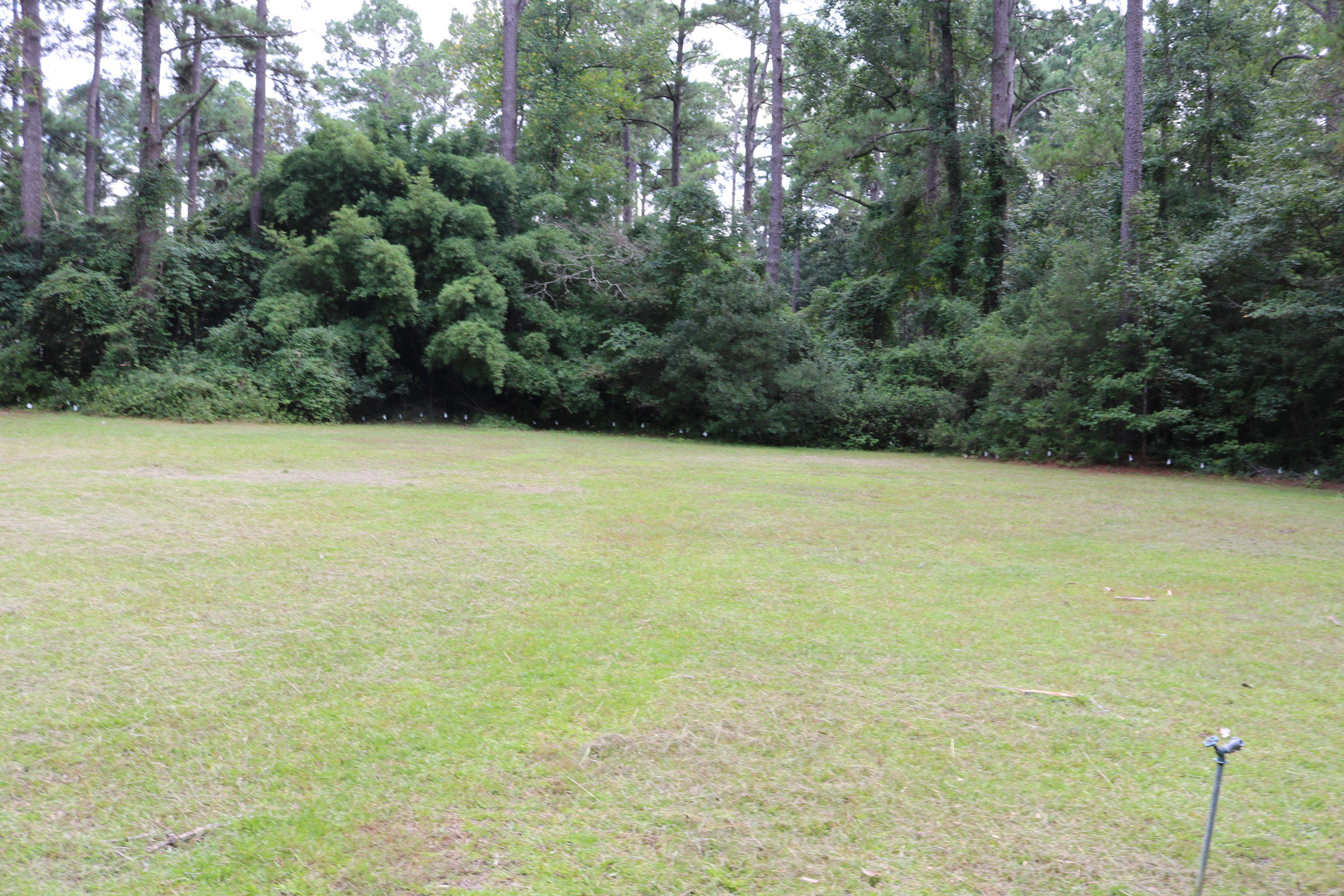 Photo of 414 Churchill Rd, Walterboro, SC 29488