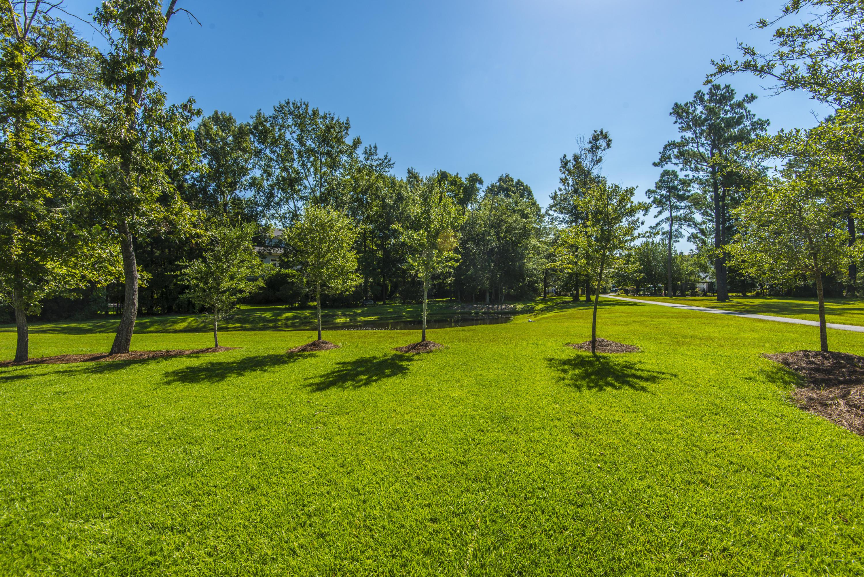 Park West Homes For Sale - 1584 Capel, Mount Pleasant, SC - 7