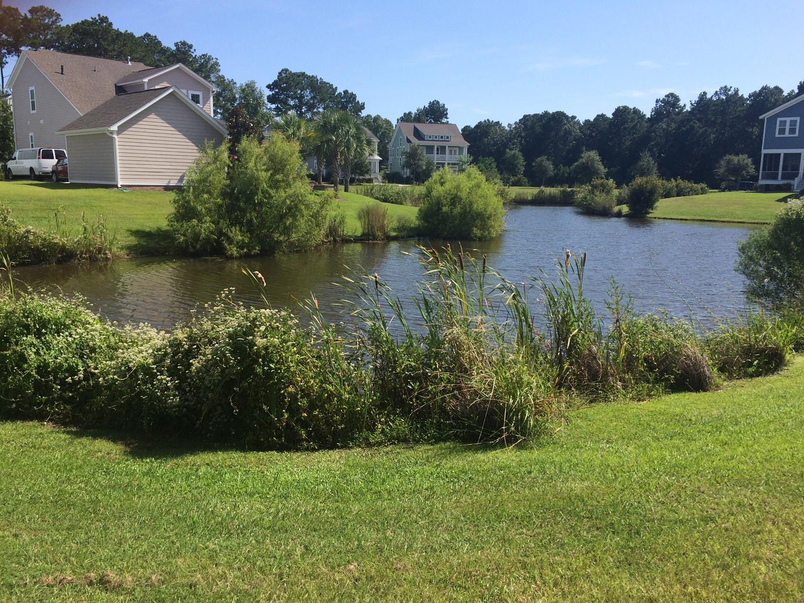 Carolina Park Homes For Sale - 3607 Shutesbury, Mount Pleasant, SC - 21