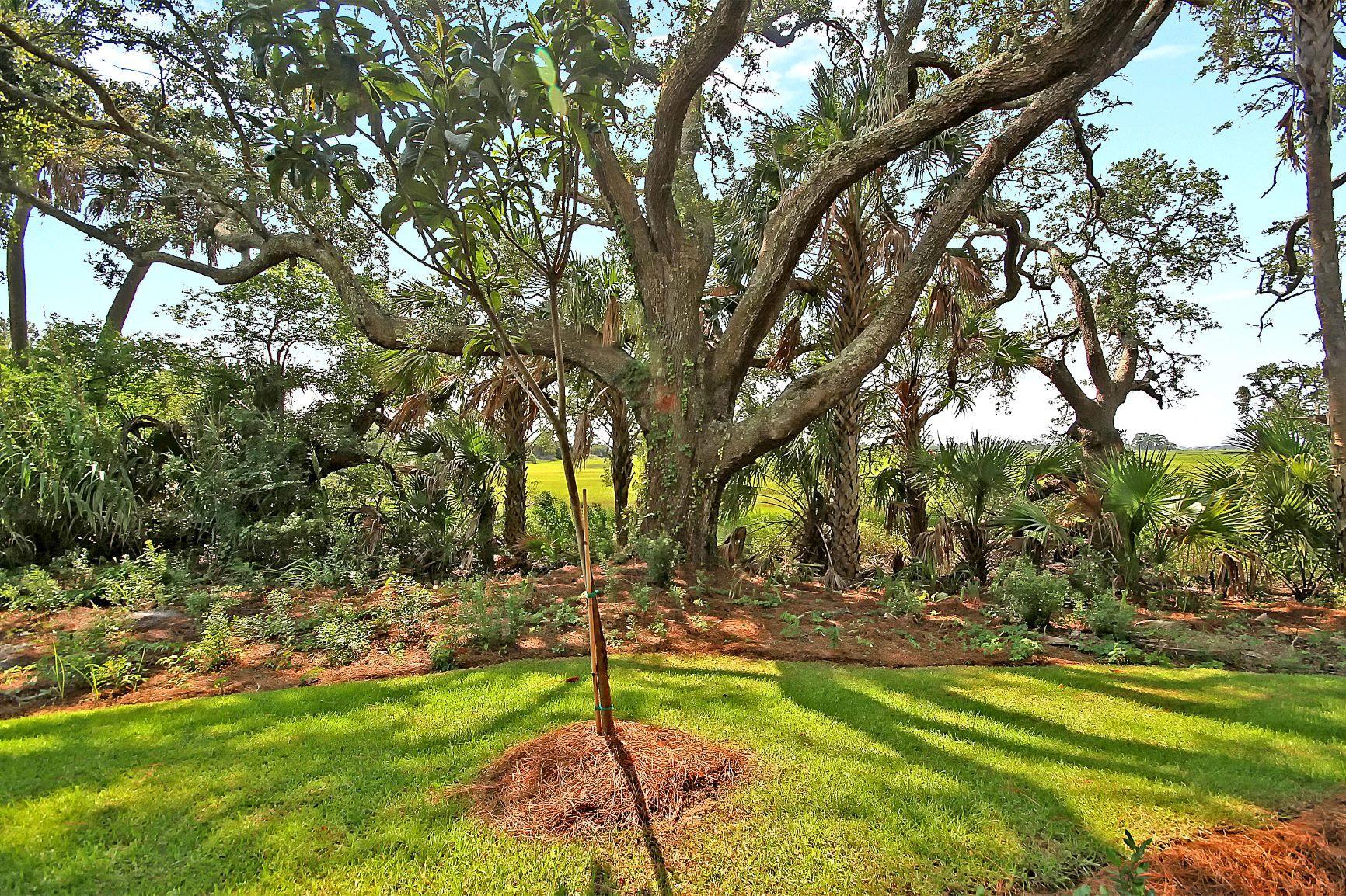 Kings Flats Homes For Sale - 121 Alder, Charleston, SC - 17