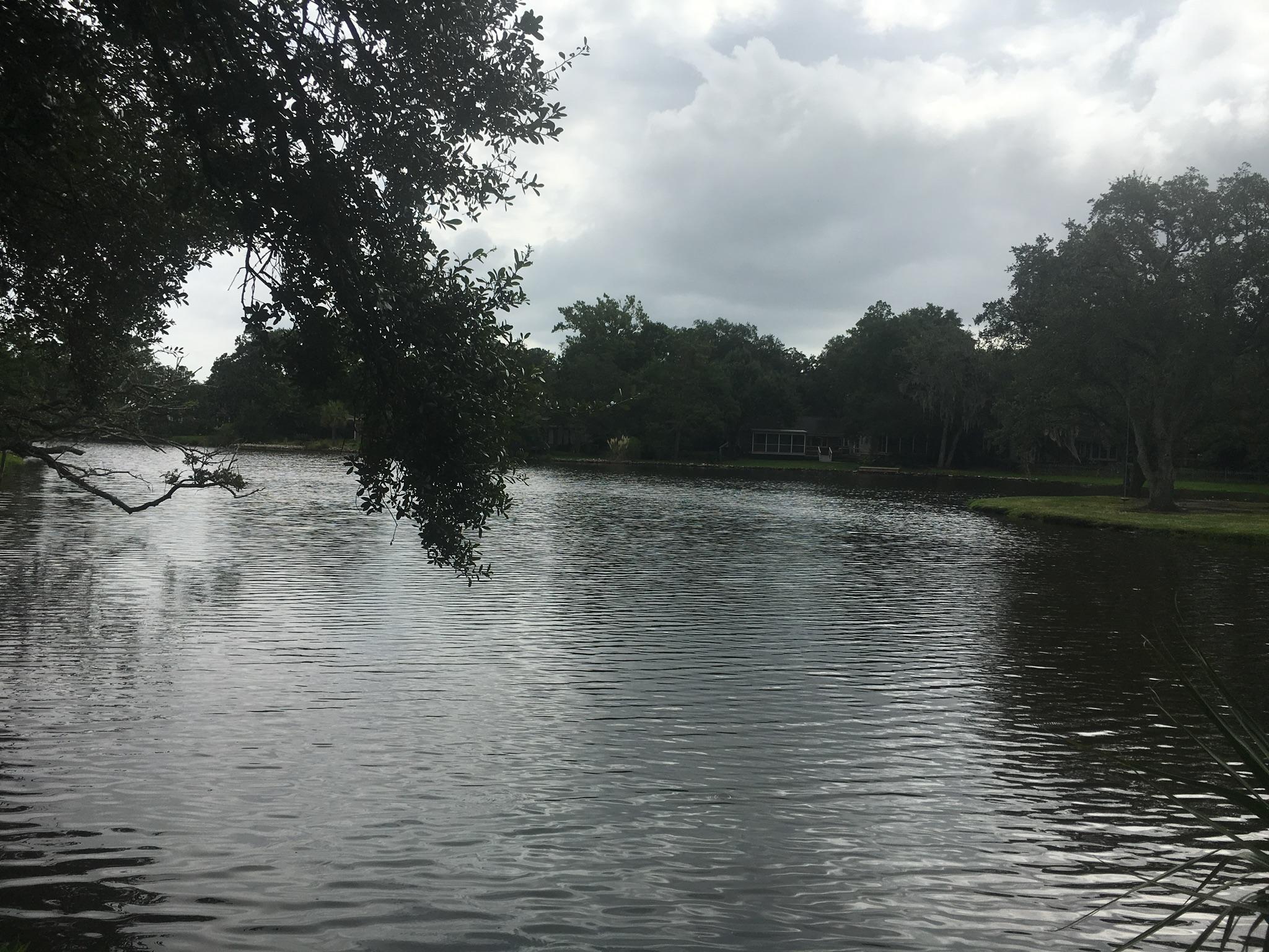 Moreland Homes For Sale - 802 Sheldon, Charleston, SC - 1