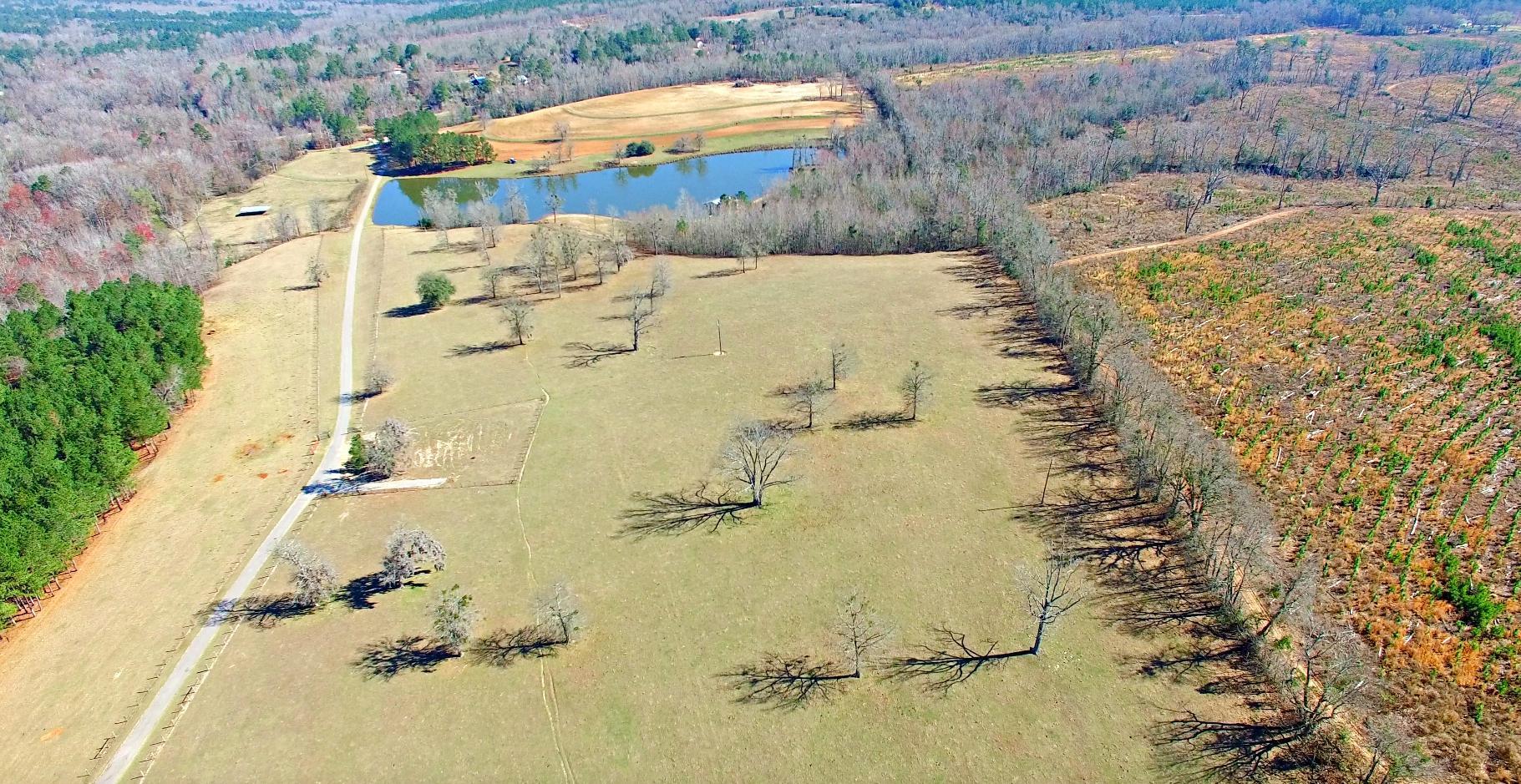 None Homes For Sale - 100 Ranch, Saint Matthews, SC - 69