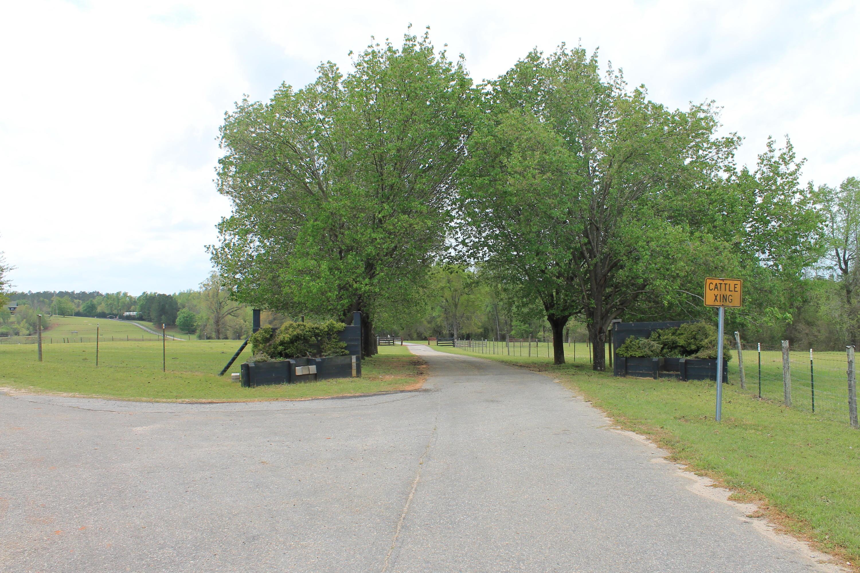 None Homes For Sale - 100 Ranch, Saint Matthews, SC - 58