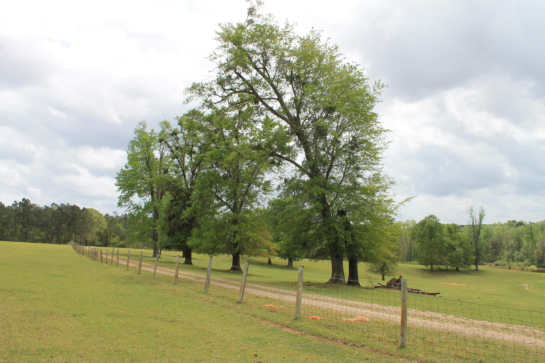 None Homes For Sale - 100 Ranch, Saint Matthews, SC - 1
