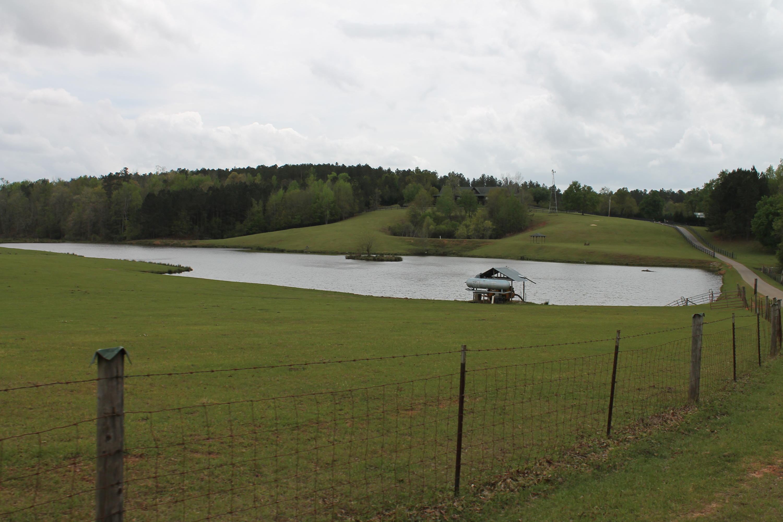 None Homes For Sale - 100 Ranch, Saint Matthews, SC - 34