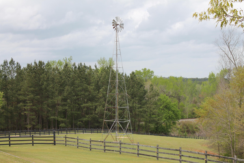 None Homes For Sale - 100 Ranch, Saint Matthews, SC - 15
