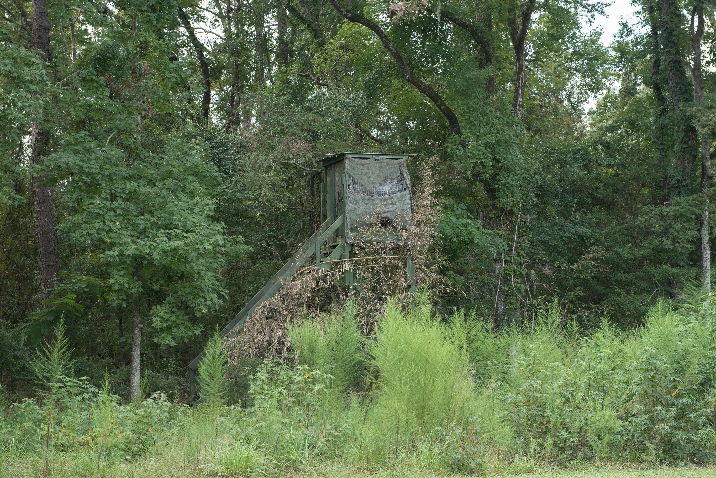 None Homes For Sale - 385 Lindaville, Cottageville, SC - 26