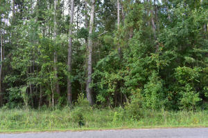 Home for Sale Rice Road, Summerville, SC