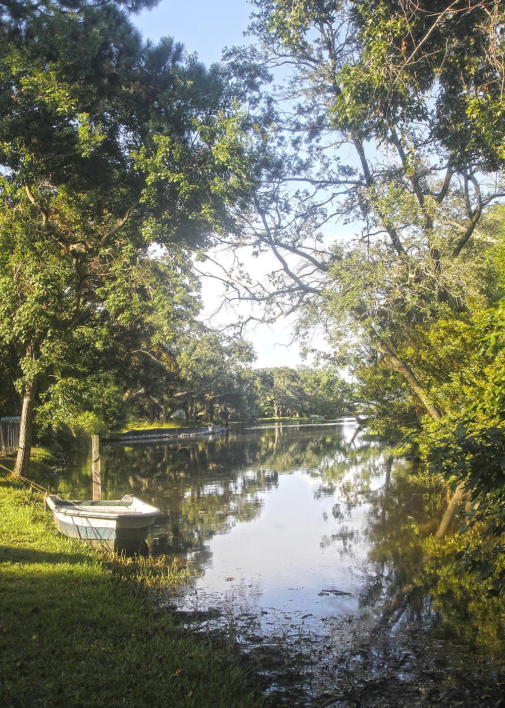 Moreland Homes For Sale - 802 Sheldon, Charleston, SC - 12