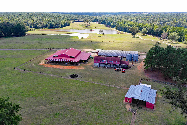 None Homes For Sale - 100 Ranch, Saint Matthews, SC - 45