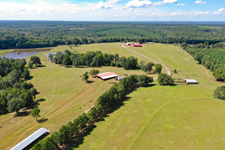 None Homes For Sale - 100 Ranch, Saint Matthews, SC - 74