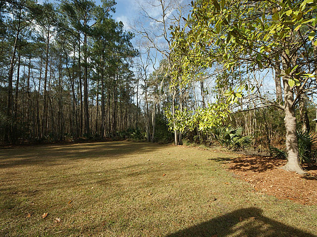 Backfield Homes For Sale - 367 Backfield, Walterboro, SC - 0