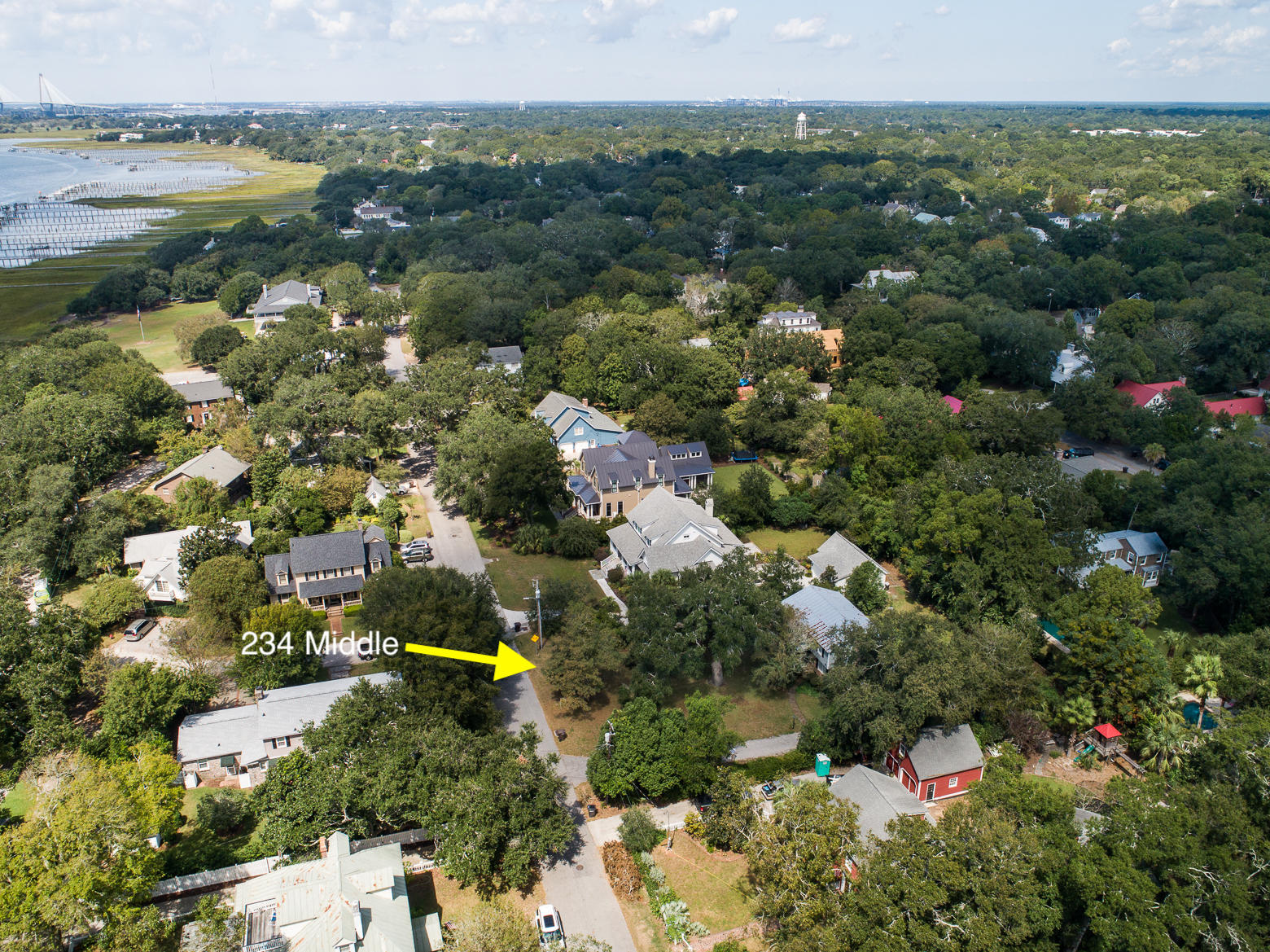 Old Village Homes For Sale - 234 Middle, Mount Pleasant, SC - 22