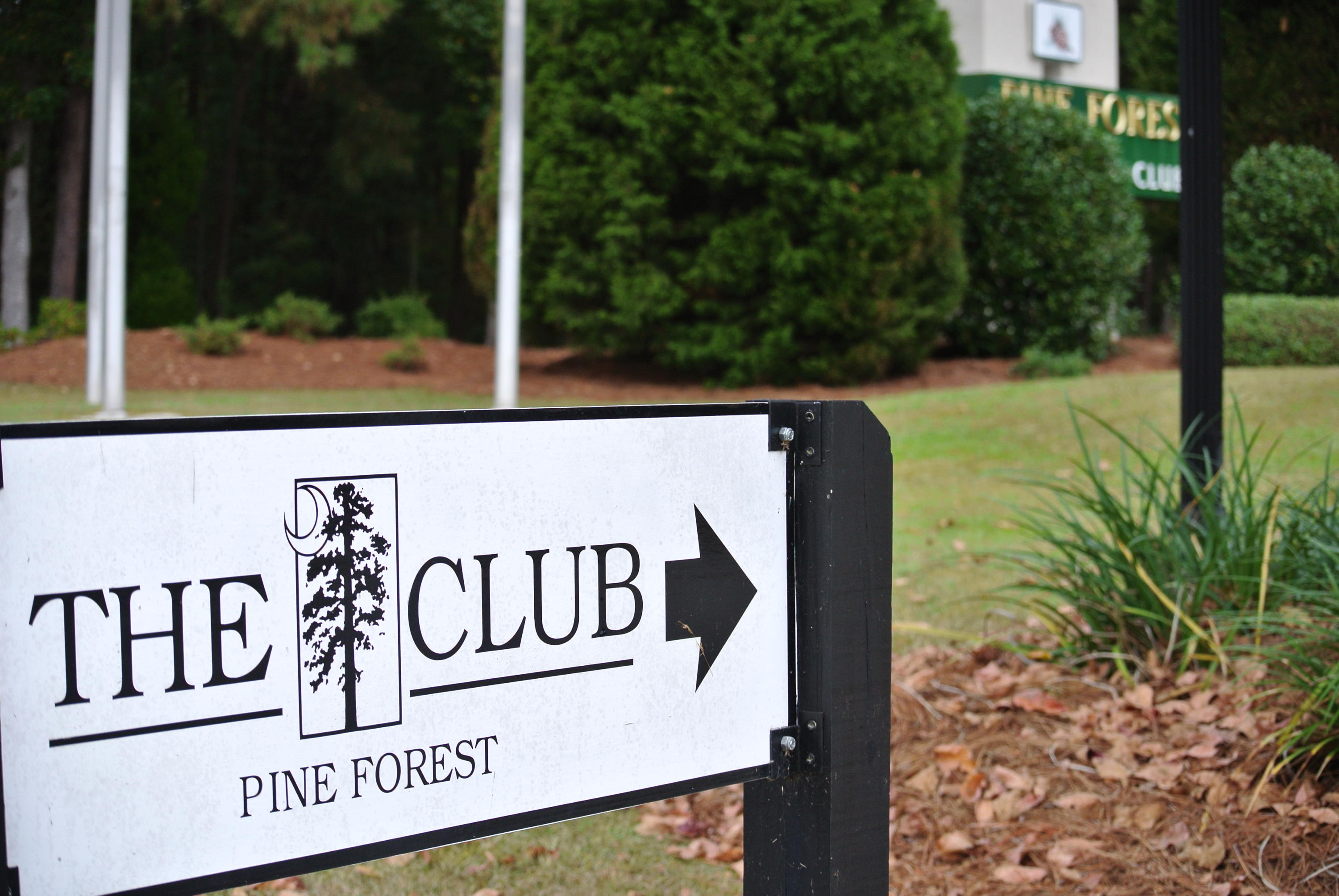 Pine Forest Country Club Homes For Sale - 617 Kilarney, Summerville, SC - 11