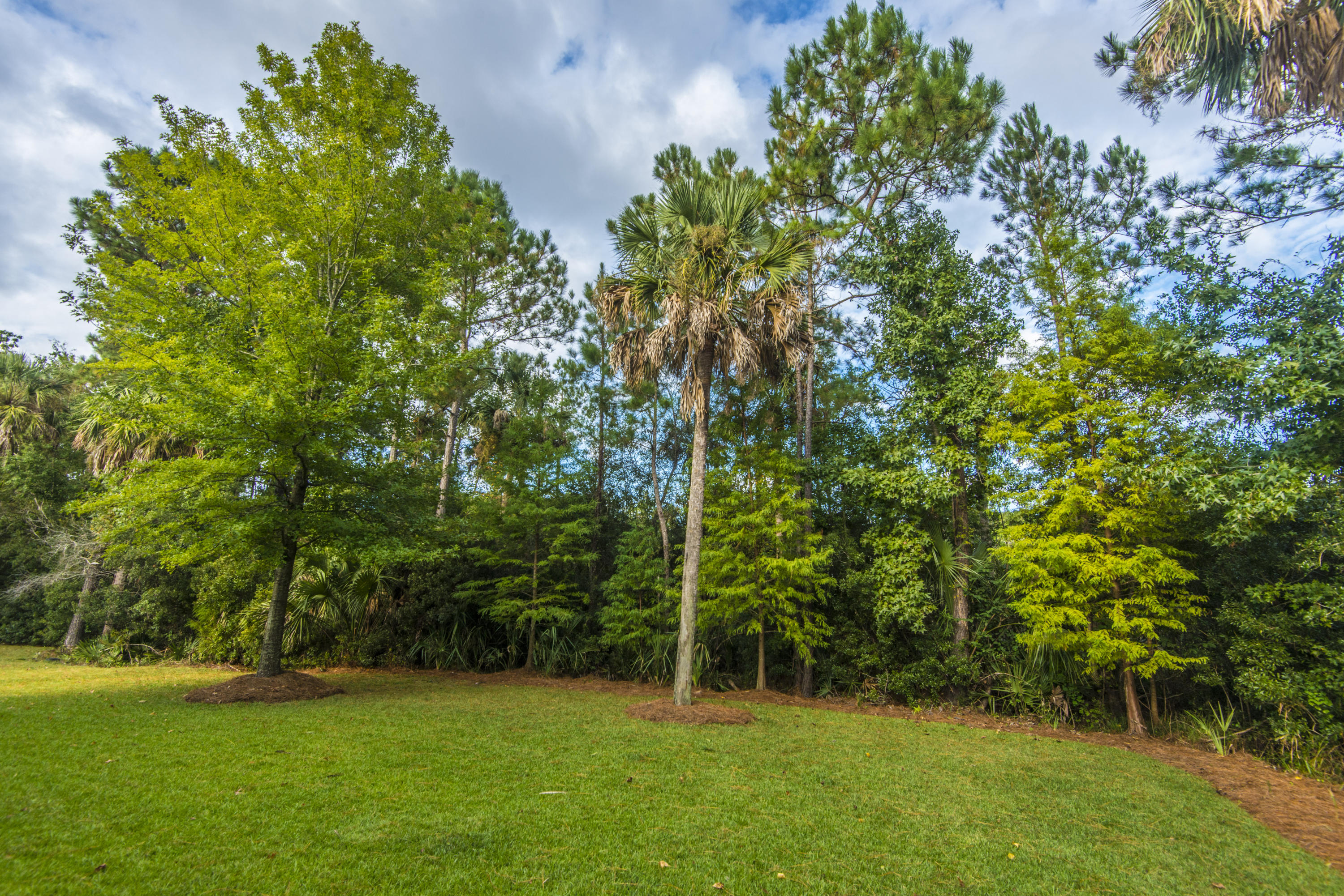 Planters Pointe Homes For Sale - 2605 Ringsted Lane, Mount Pleasant, SC - 20