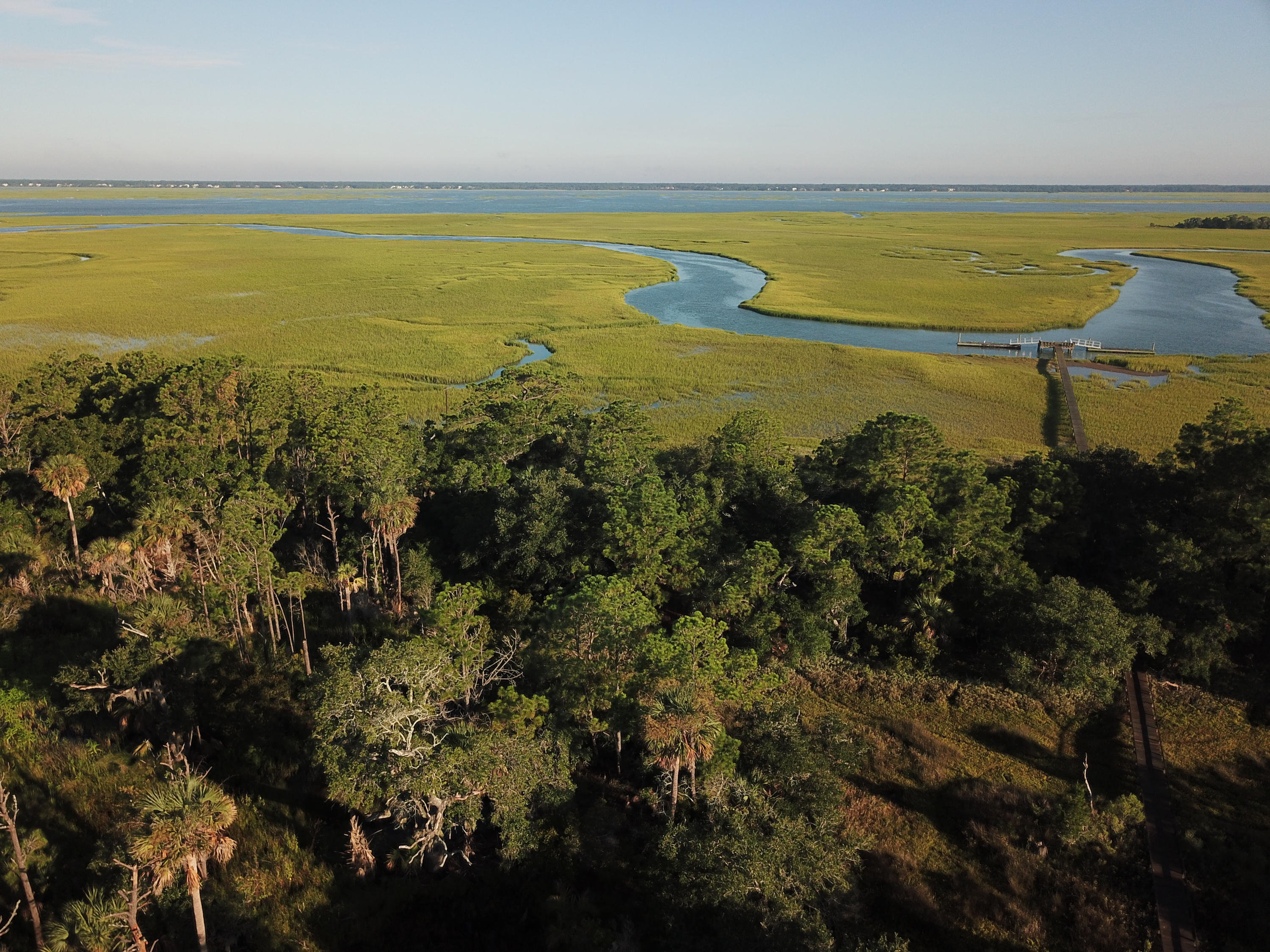 Dewees Island Lots For Sale - 266 Old House Lane Lot 120, Dewees Island, SC - 23