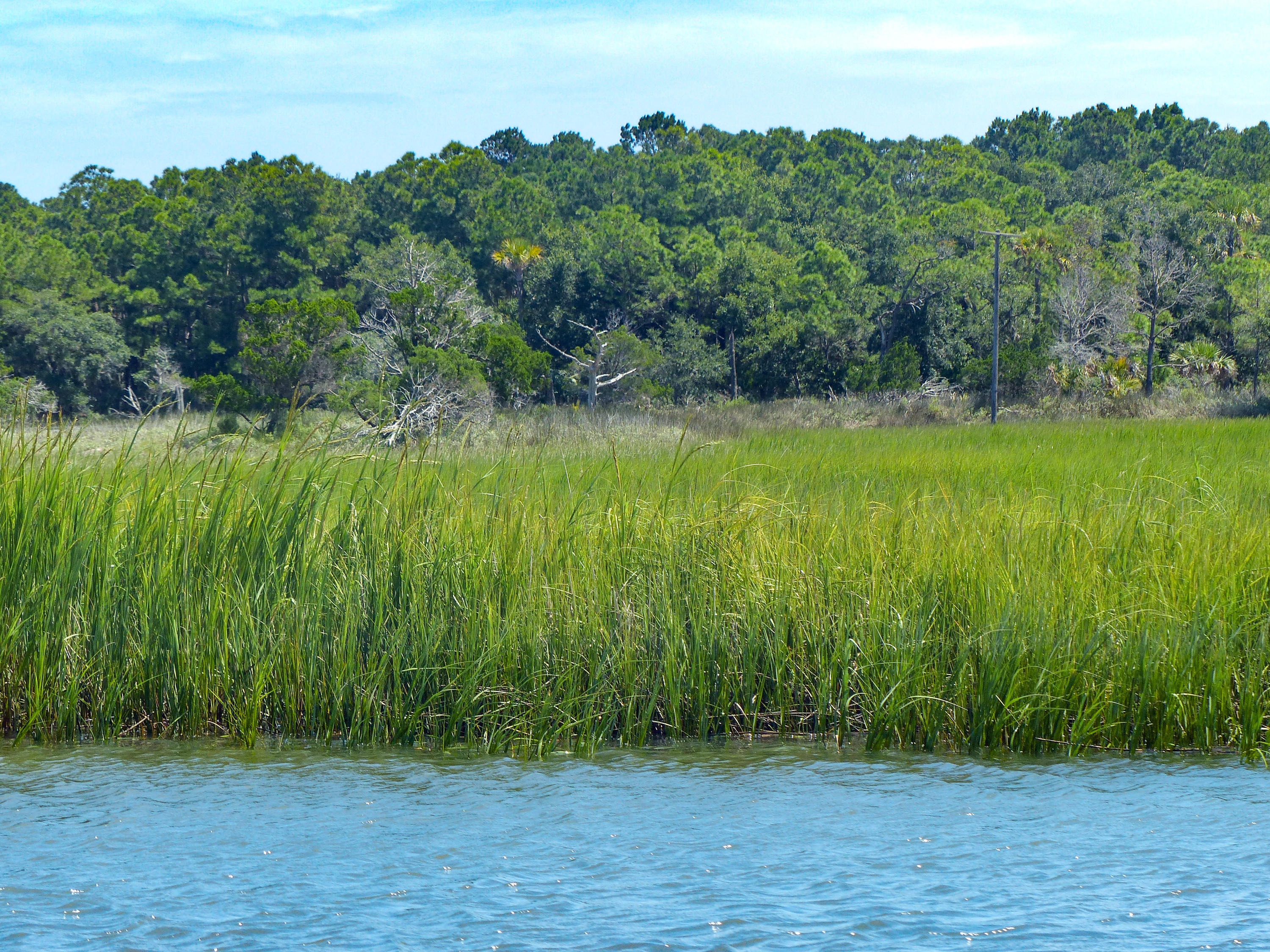 Dewees Island Lots For Sale - 266 Old House Lane Lot 120, Dewees Island, SC - 19