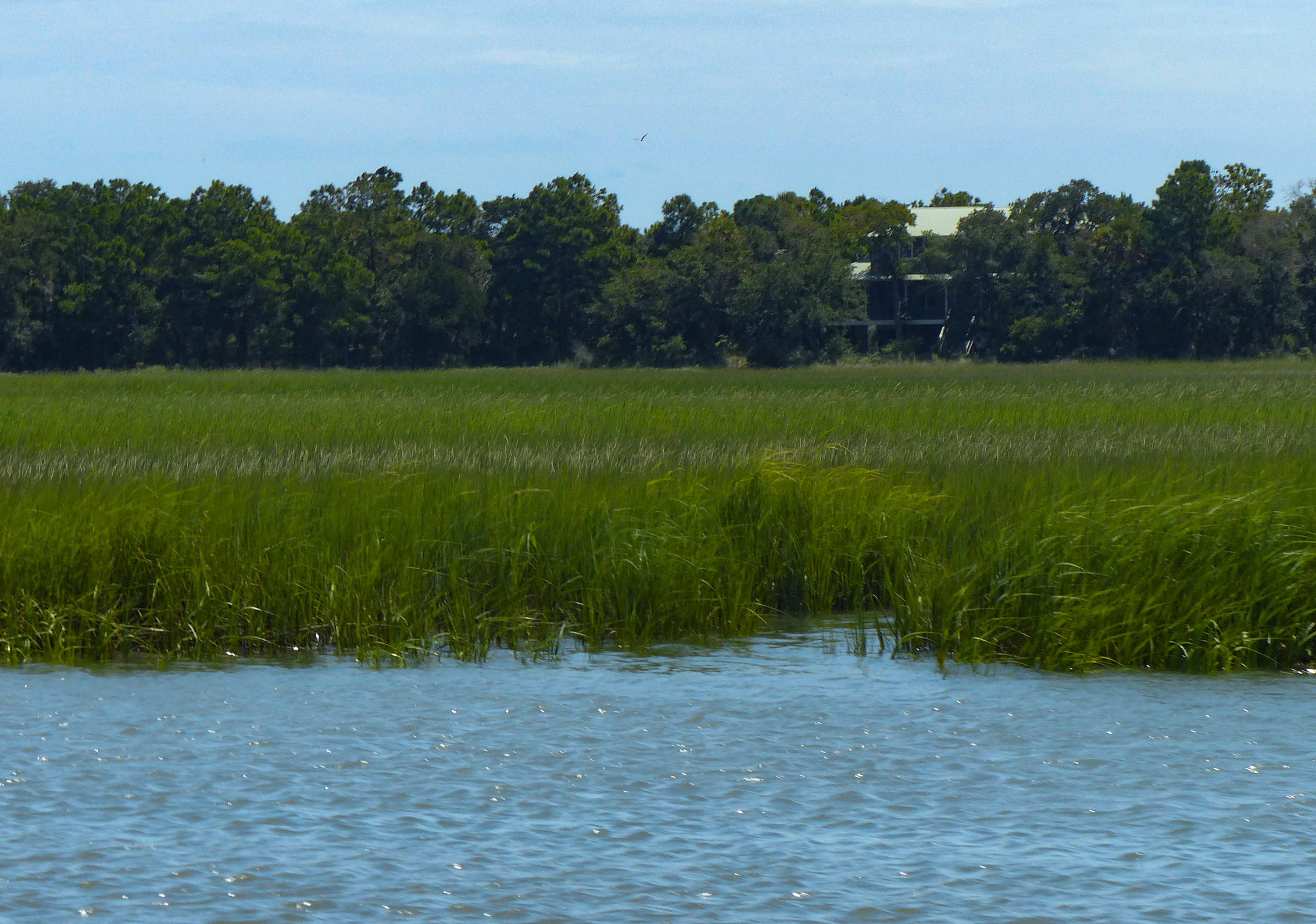 Dewees Island Lots For Sale - 266 Old House Lane Lot 120, Dewees Island, SC - 18
