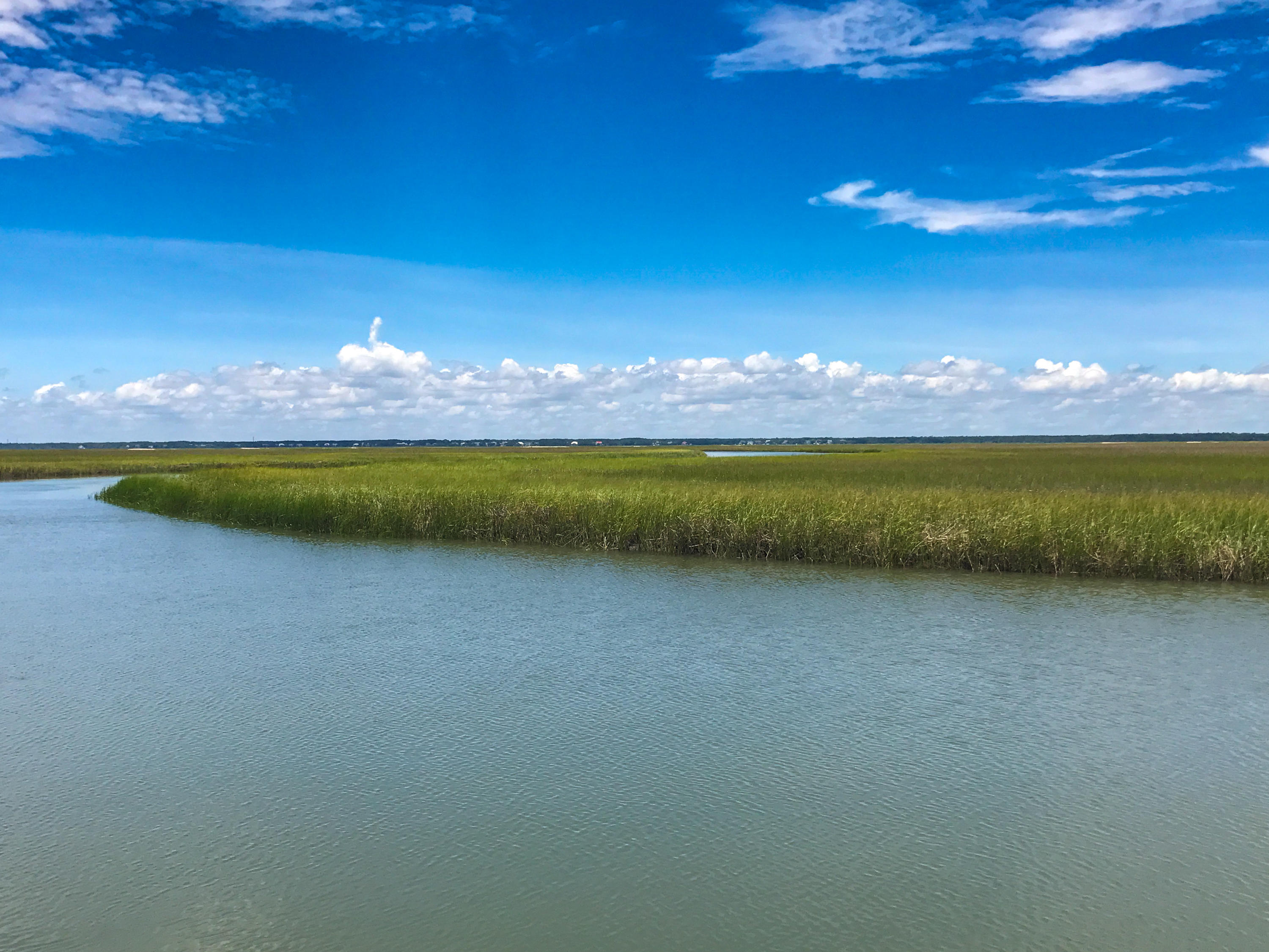 Dewees Island Lots For Sale - 266 Old House Lane Lot 120, Dewees Island, SC - 11