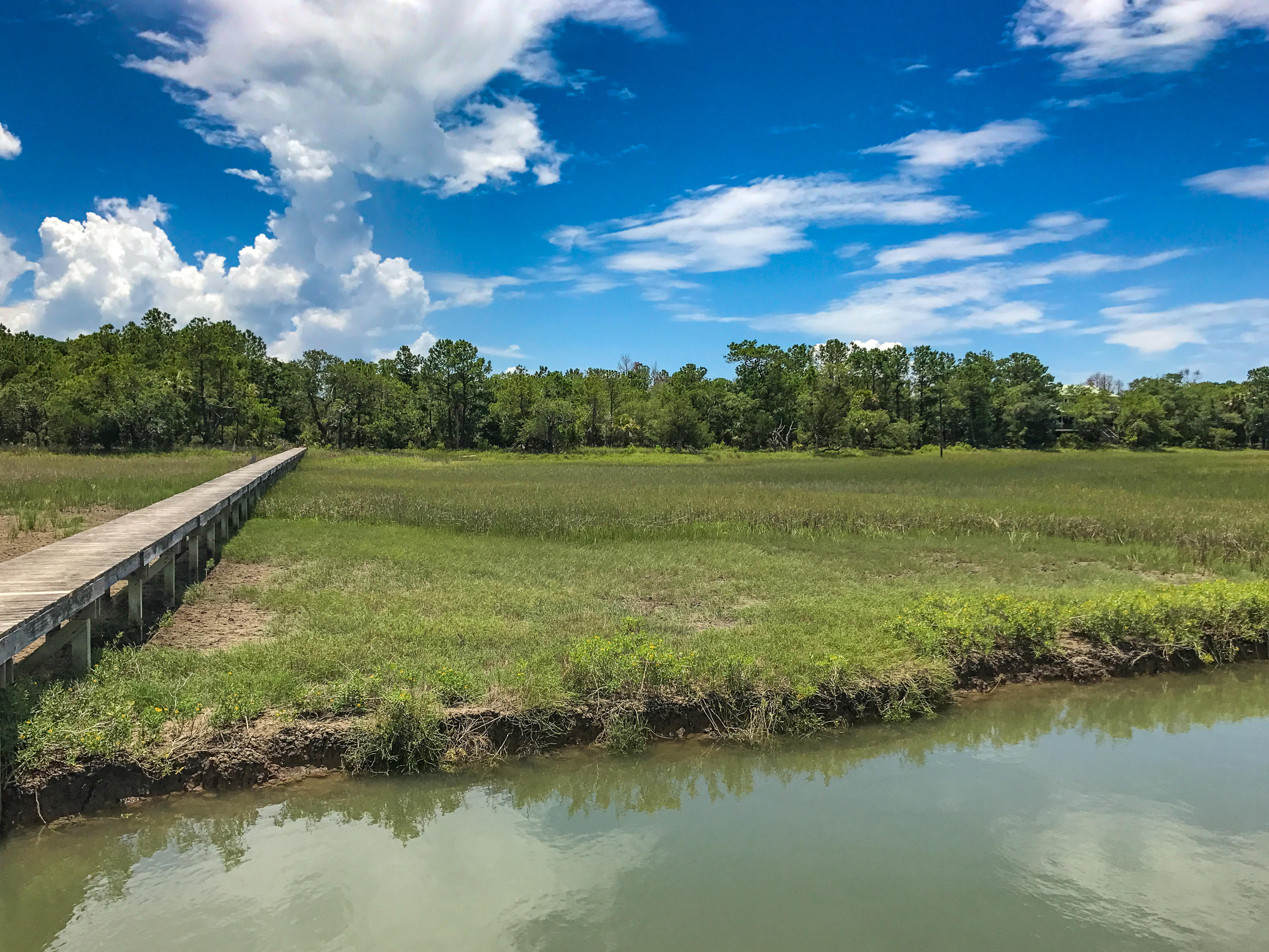 Dewees Island Lots For Sale - 266 Old House Lane Lot 120, Dewees Island, SC - 4