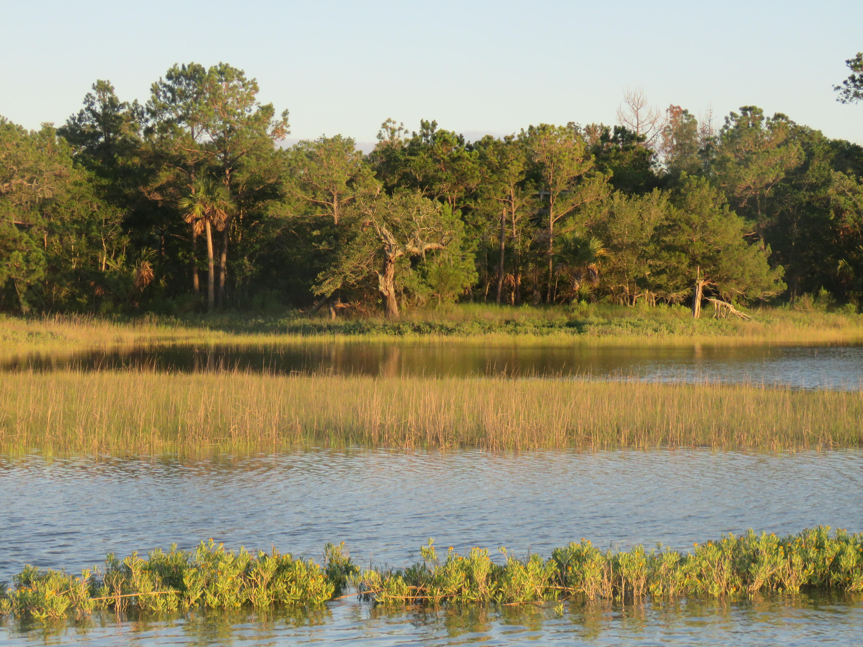 Dewees Island Lots For Sale - 266 Old House Lane Lot 120, Dewees Island, SC - 8