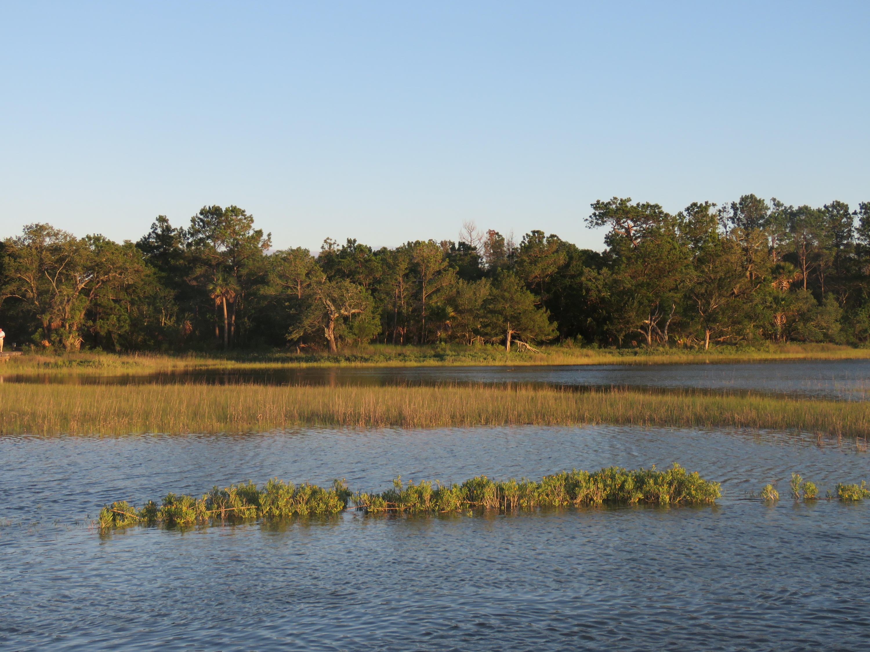 Dewees Island Lots For Sale - 266 Old House Lane Lot 120, Dewees Island, SC - 0