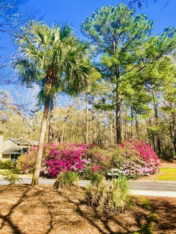 The Park at Rivers Edge Homes For Sale - 7856 Montview, North Charleston, SC - 16