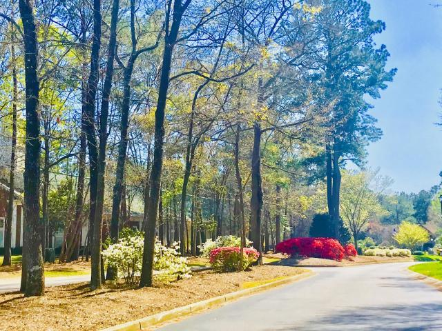 The Park at Rivers Edge Homes For Sale - 7854 Montview, North Charleston, SC - 6
