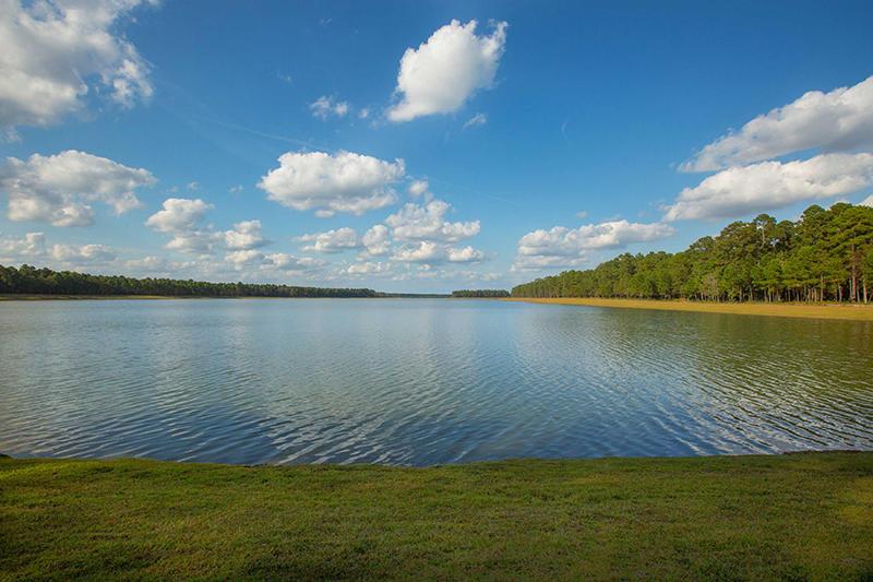 Cane Bay Plantation Homes For Sale - 209 Seaworthy, Summerville, SC - 19