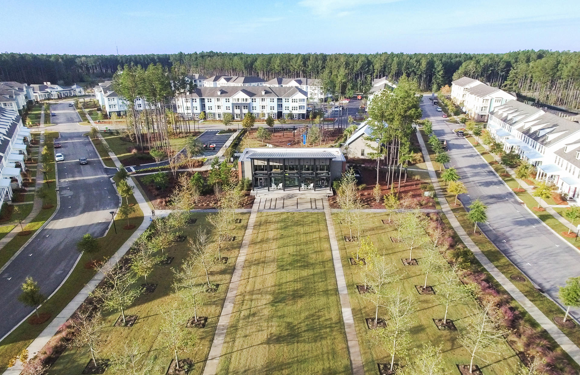 Nexton Homes For Sale - 318 Scholar, Summerville, SC - 5