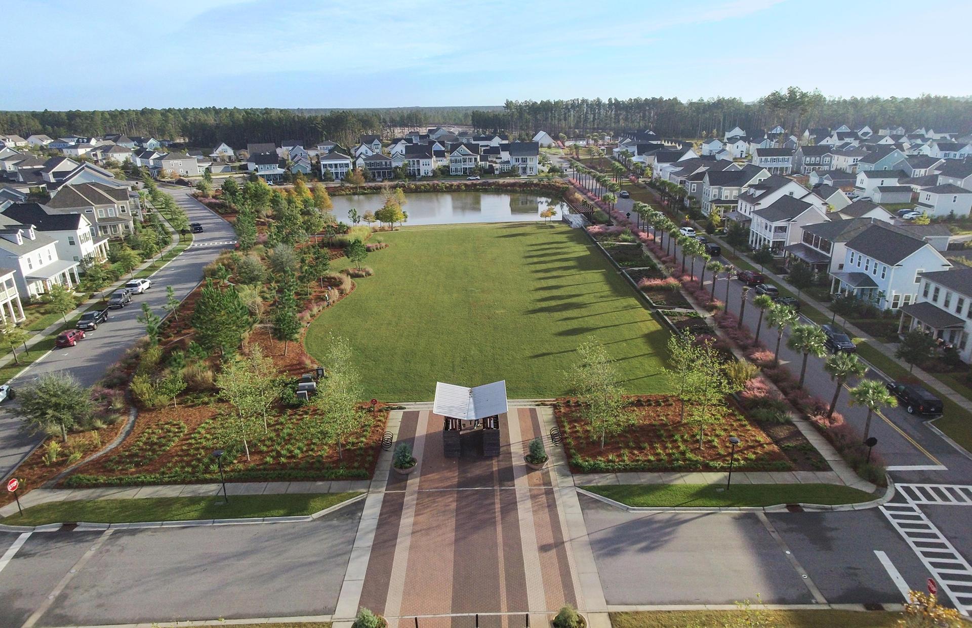Nexton Homes For Sale - 318 Scholar, Summerville, SC - 4