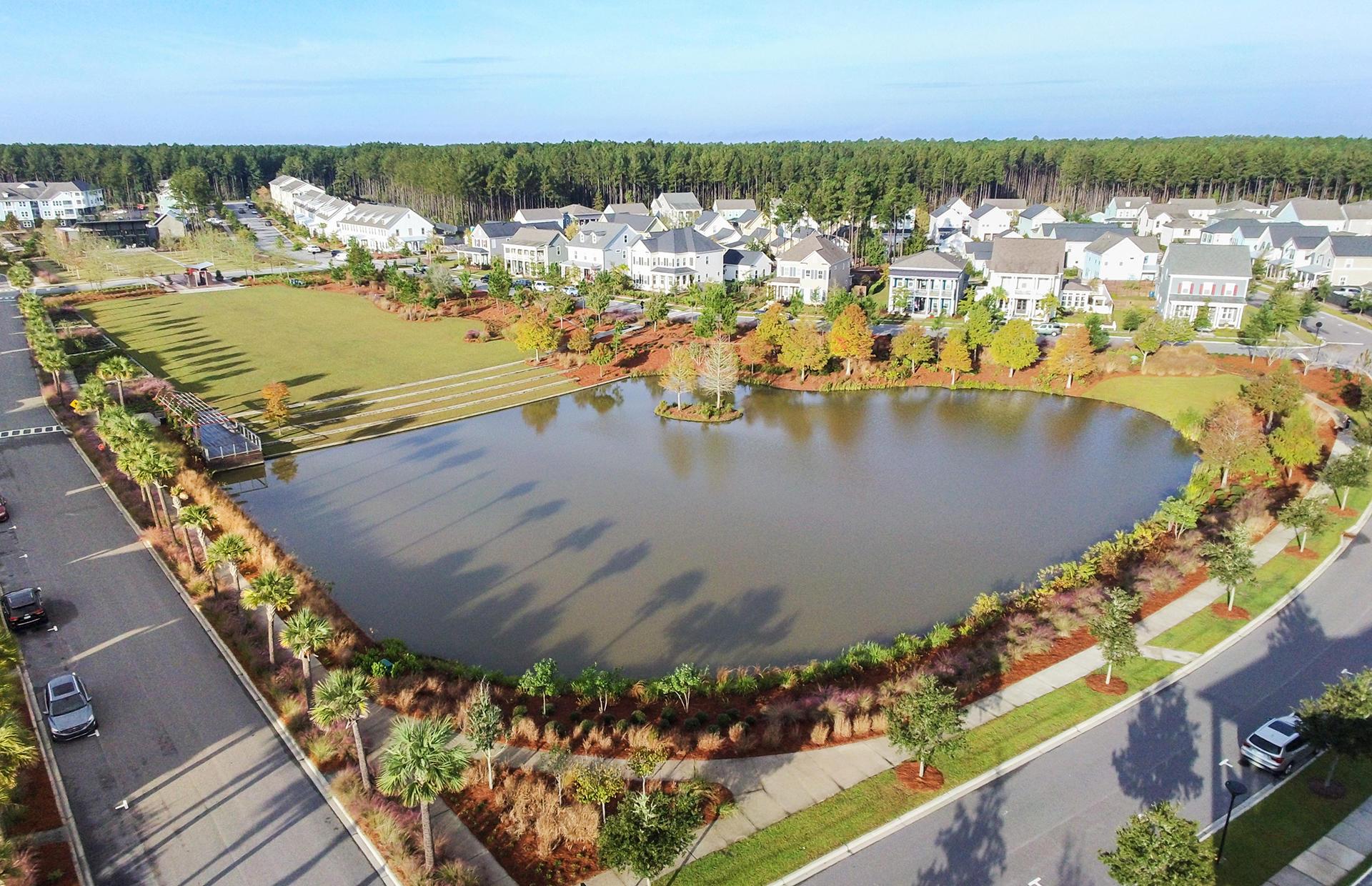 Nexton Homes For Sale - 318 Scholar, Summerville, SC - 3