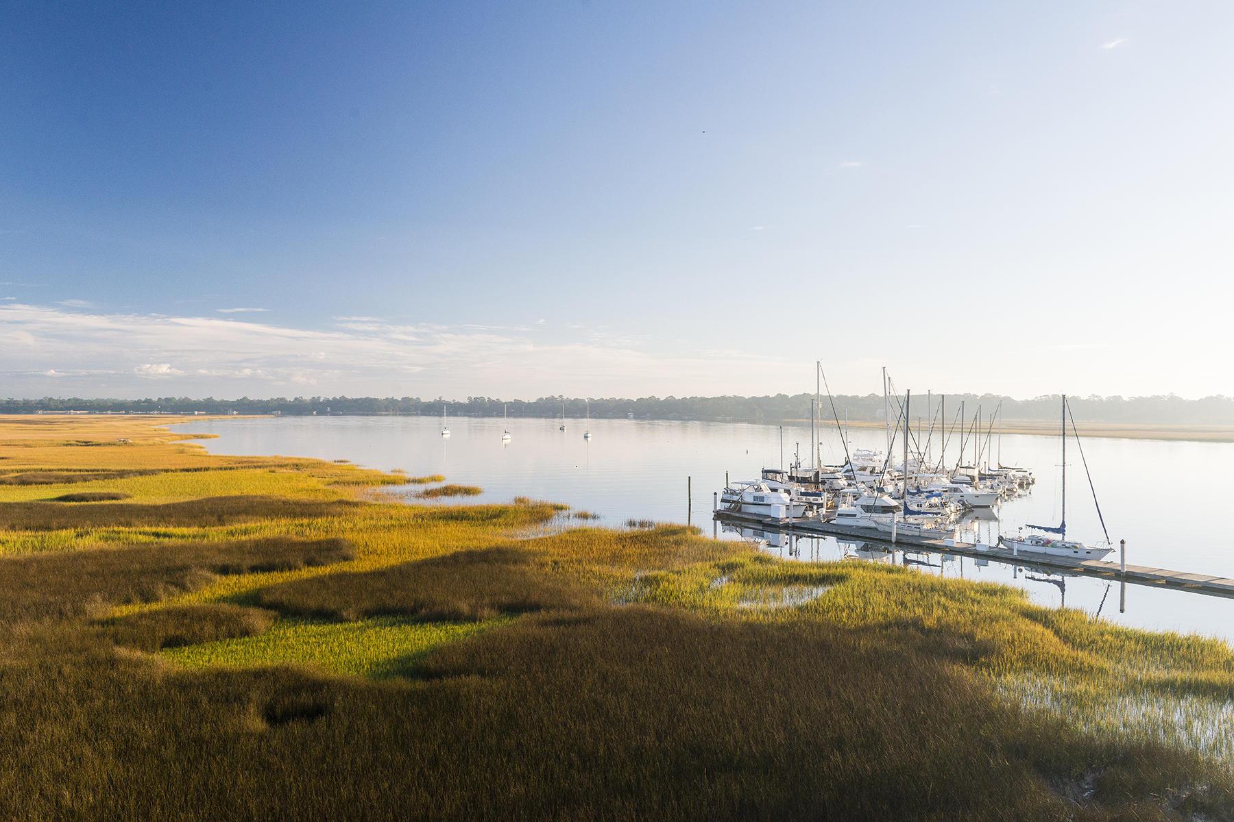 St. Johns Yacht Harbor Homes For Sale - 2408 Maybank, Johns Island, SC - 1