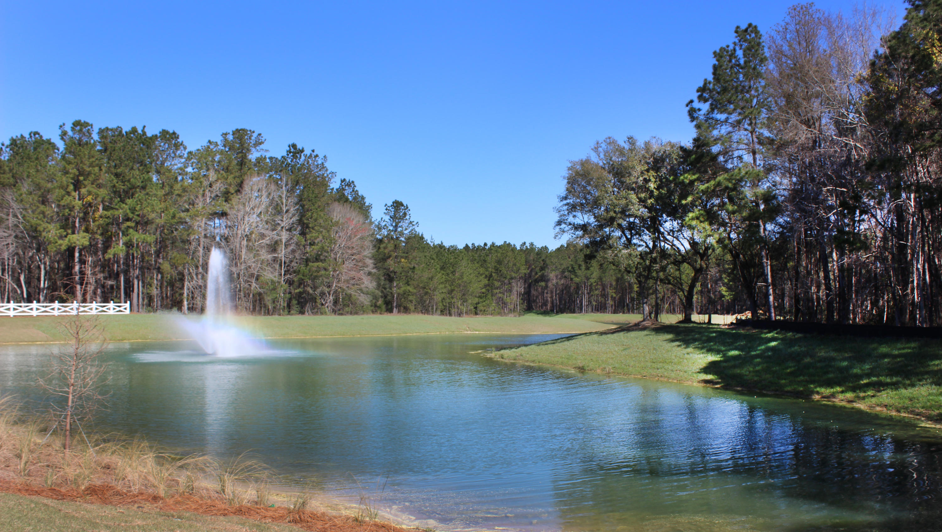 Bridges at Seven Lakes Homes For Sale - 243 Camber, Huger, SC - 5