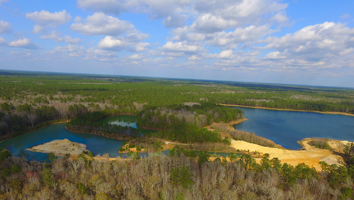 Bridges at Seven Lakes Homes For Sale - 203 Camber, Huger, SC - 0