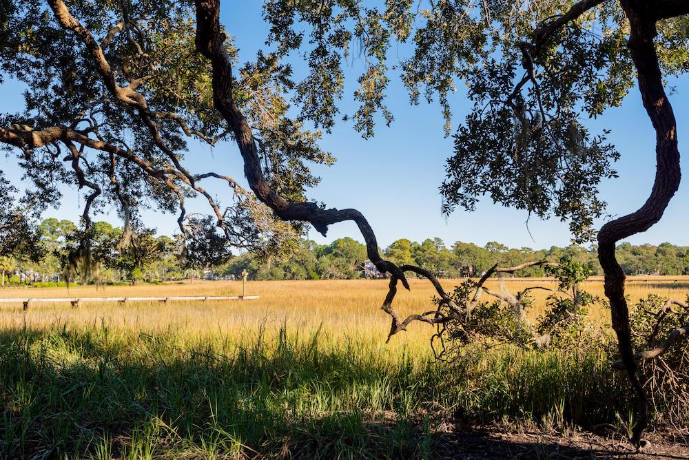 Stiles Point Plantation Homes For Sale - 915 Paul Revere, Charleston, SC - 49
