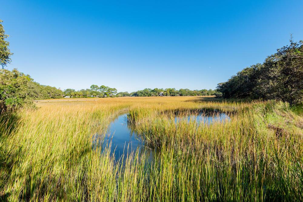 Stiles Point Plantation Homes For Sale - 915 Paul Revere, Charleston, SC - 47