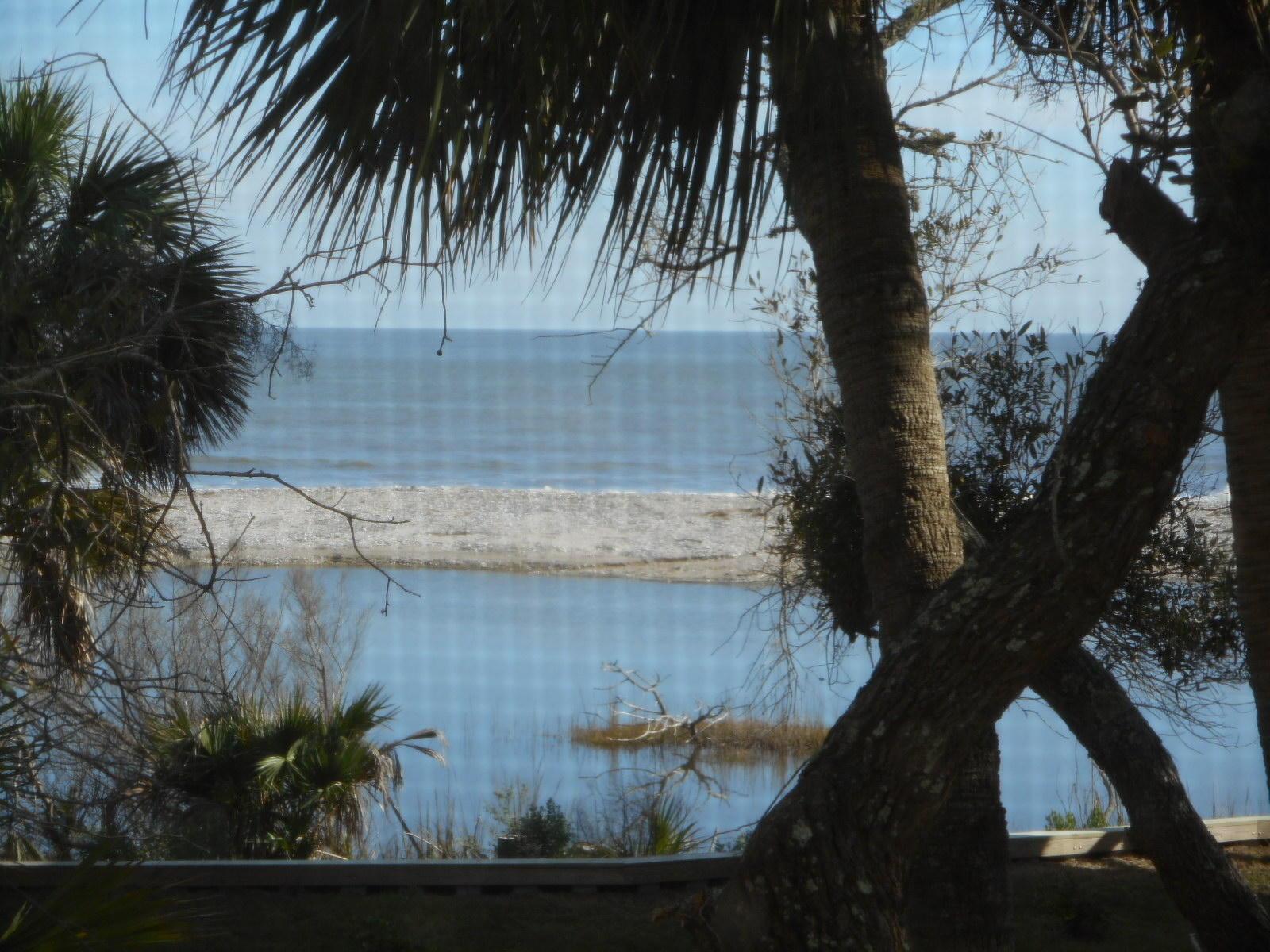 Jeremy Cay Homes For Sale - 9 Lost Village, Edisto Island, SC - 22