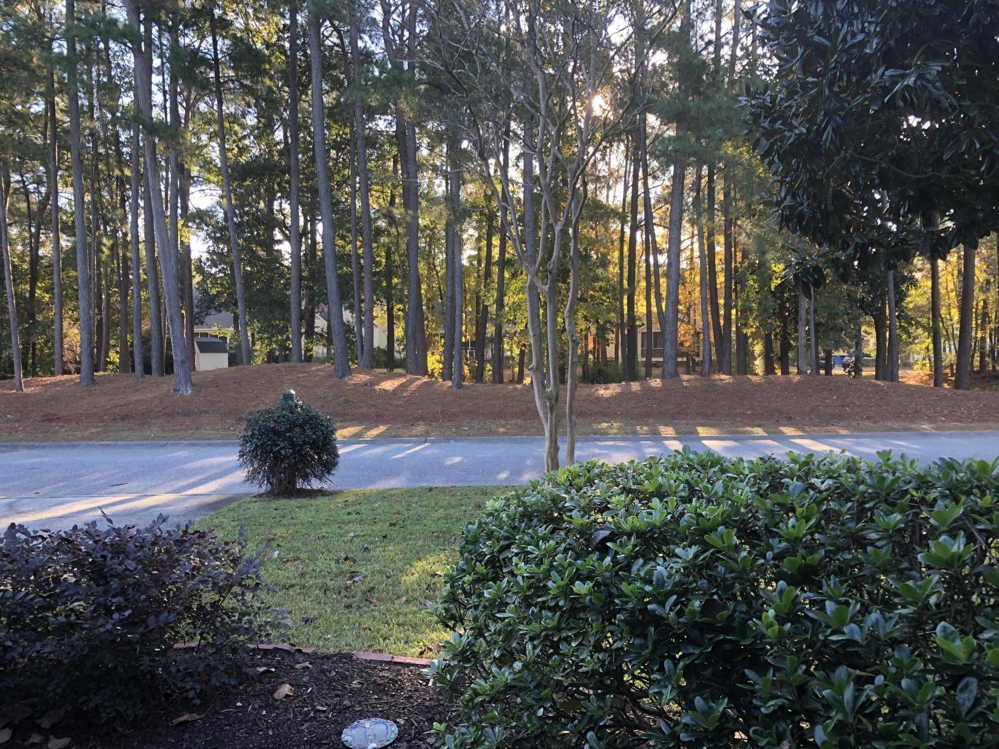 Charleston National Homes For Sale - 1269 Sam Snead, Mount Pleasant, SC - 3