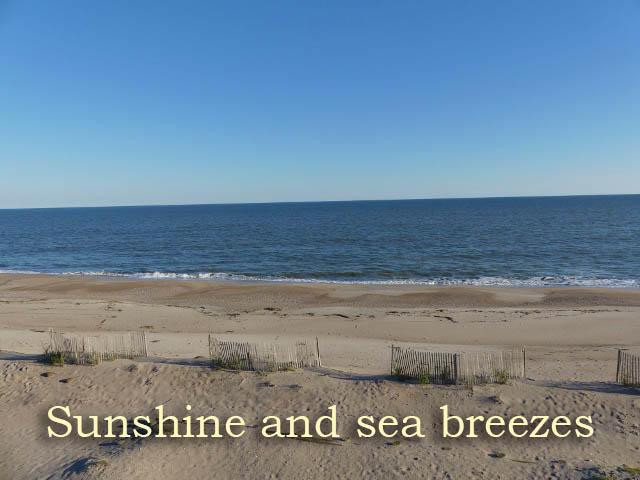 Edisto Beach Homes For Sale - 708 Palmetto, Edisto Island, SC - 90